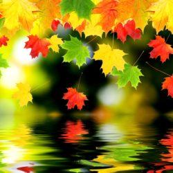 Zbliża się jesień... Pielęgnacja skóry jesienią